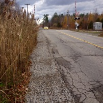 A railroad crossing on Reesor Road