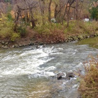 Rouge River flowing past Glen Rouge Campground